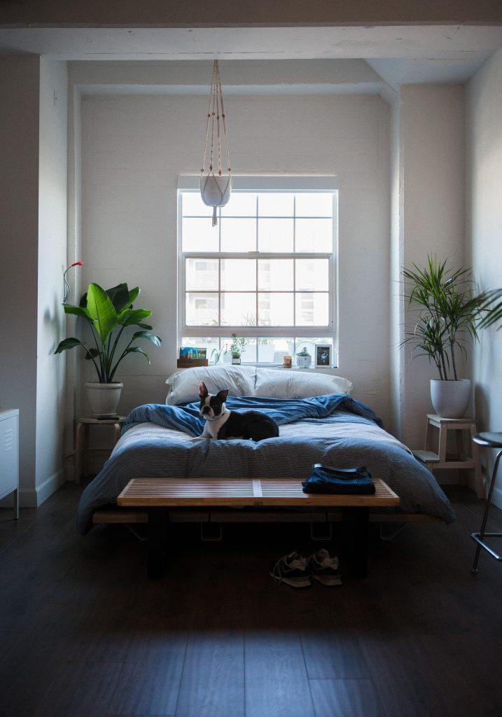 không đặt giường dưới cửa sổ